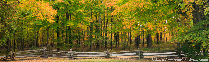 Fall Colors, Door County Wisconsin Panoramic