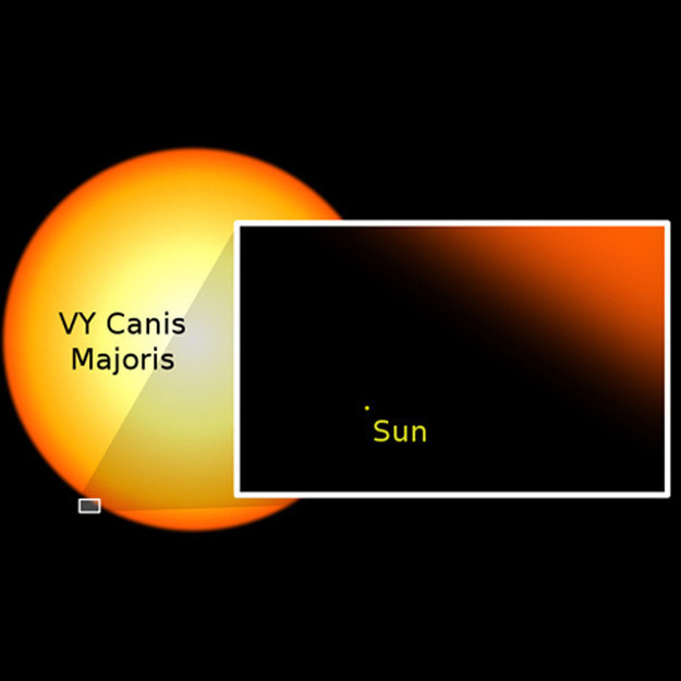Sun vs. VY Canis Majoris