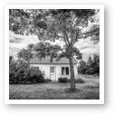 This Old House - Black and White