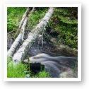 Stream from Munising Falls