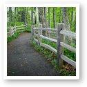 Trail to Chapel Rock