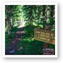 Burro Pass trailhead