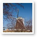 Dutch Windmill, De Immigrant - Fulton, IL