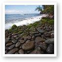 Rocky shoreline near DT Fleming beach