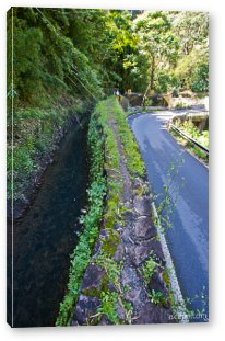 Part of Maui fresh water supply system Canvas Print