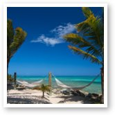 Buy Print of Breezy Island Life