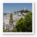 Lombard Street and Coit Tower on Telegraph Hill