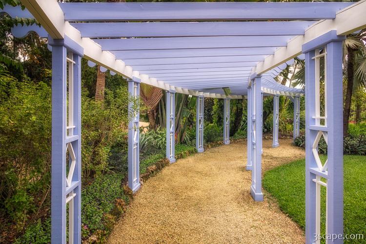 pergola along the path in queen elizabeth ii botanic park photograph