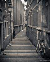 Amsterdam Alley Monochrome