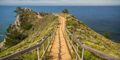 Path to Muir Beach Overlook