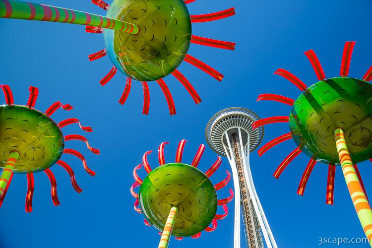 Seattle Center - Sonic Bloom