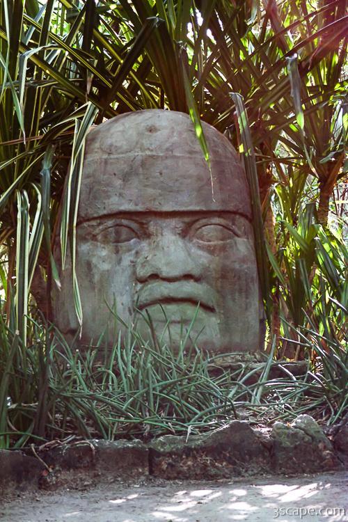 Giant Mayan Head Sculpture Chankanaab Nature Park