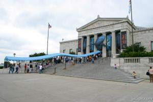 Lines at the Shedd for the new Wild Reef exhibit