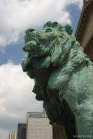 The Lion at the Art Institute