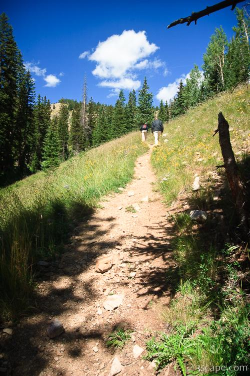 Burro Pass Trail