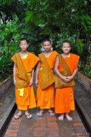 Three young Buddhist monks at a monastery in Chiang Mai, Thailan