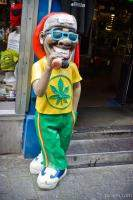 Rasta man near green cafe