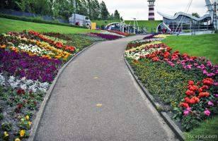 Flowers along the walkway in Madurodam