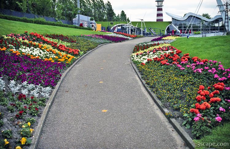 flowers along the walkway in madurodam photograph landscape