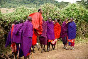 Maasai men performing a welcome dance