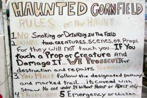 Strict rules for the haunted cornfield