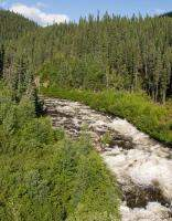 Fast running stream in Canadian wilderness
