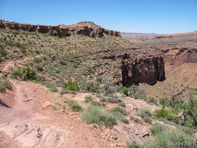 Porcupine Rim Trail at Negro Bill Canyon