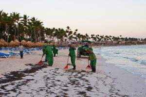 Resort workers cleaning seaweed off the beach