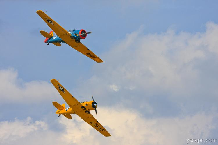 North American T-6 Texans in formation