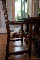 Six toed cat at the Ernest Hemingway home