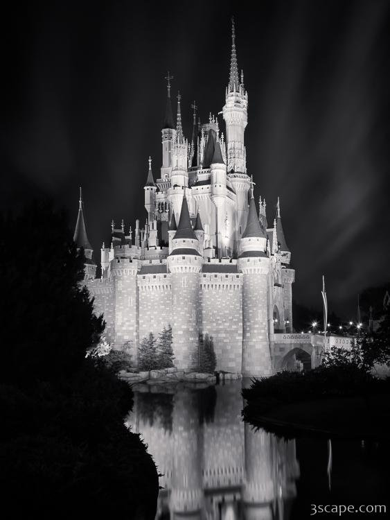 cinderellas castle reflection black and white photograph