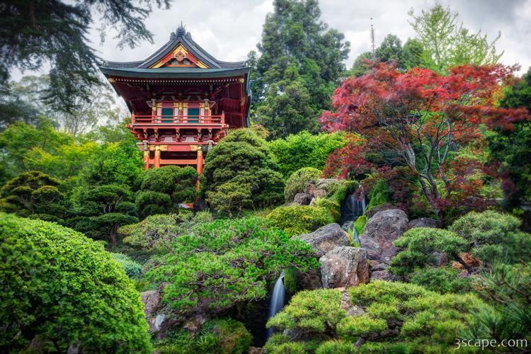 Japanese Tea Garden - Golden Gate Park Photograph - Landscape ...