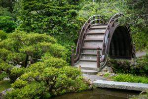 Moon Bridge - Japanese Tea Garden